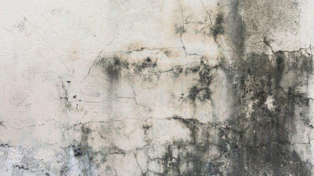 壁の黒ずみ
