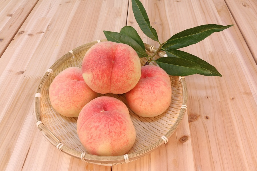 岡山名産品の白桃